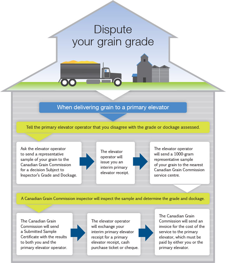 Infographic of how to dispute your grain grade. Text version below
